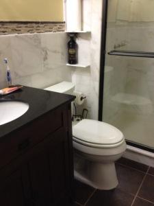 toiletinstall